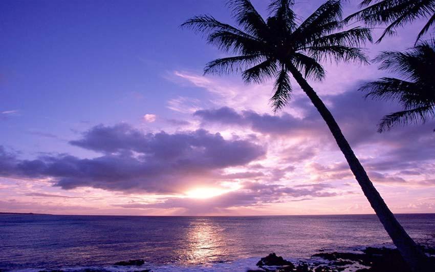 Playa de la polinesia, similar a la narrada en la novela el navegante, de Morris West